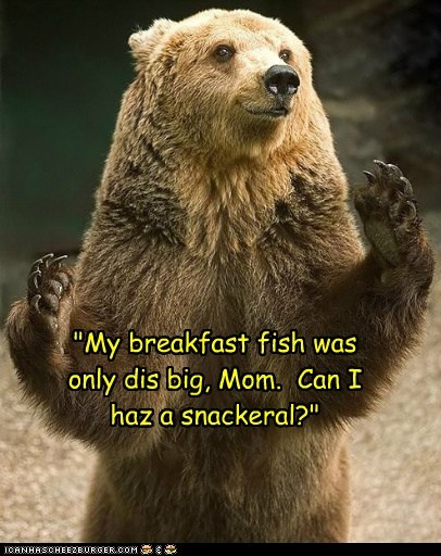 hungry breakfast snack bears fish mom - 6933266176