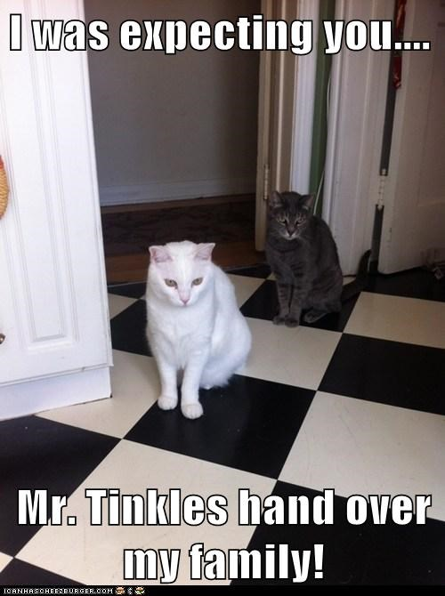 I was expecting you....  Mr. Tinkles hand over my family!