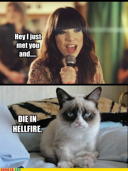 that escalated quickly,carly rae jepsen,die,call me maybe,Grumpy Cat
