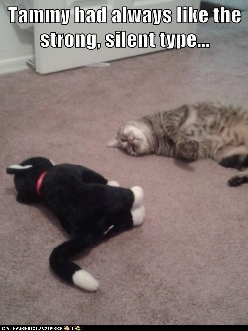 cat,toy,stuffed animal,funny