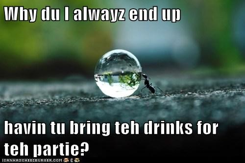 drinks water drop ants Party why - 6933969664