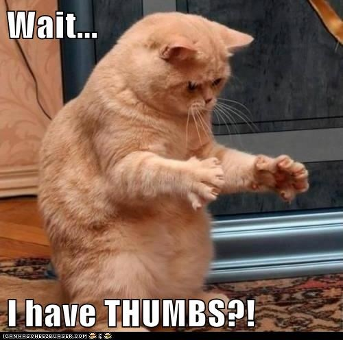 Wait...  I have THUMBS?!