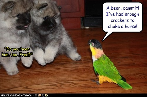 "A beer, dammit! I've had enough crackers to choke a horse! ""Do you hear him, too, Fred?"""
