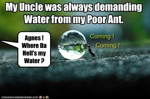 My Uncle was always demanding Water from my Poor Ant. Agnes ! Where Da Hell's my Water ? Coming ! Coming !