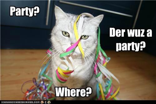 Party? Where? Der wuz a party?