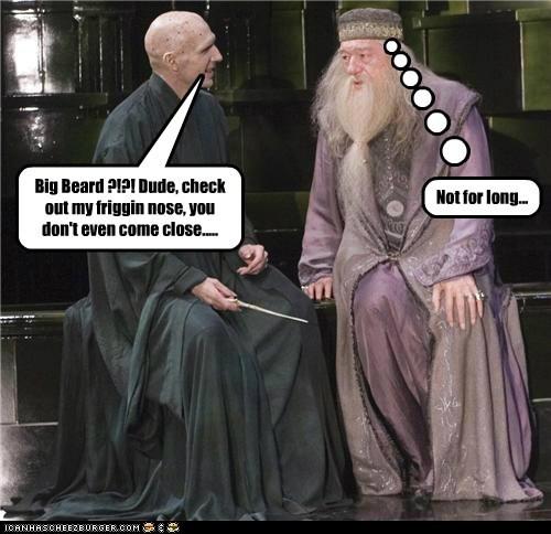 Harry Potter voldemort dumbledore ralph fiennes - 6934669568