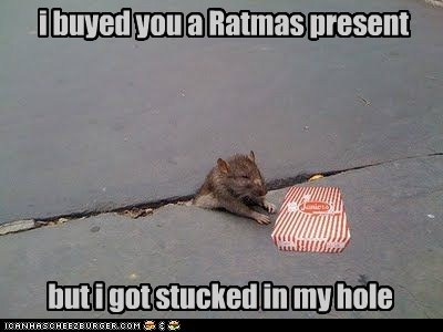 i buyed you a Ratmas present but i got stucked in my hole