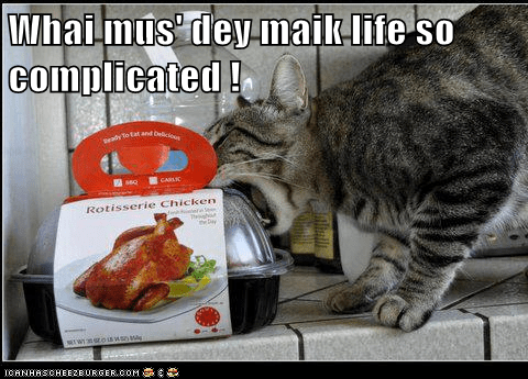 chicken,captions,nom,eat,barrier,plastic,food,lid,Cats
