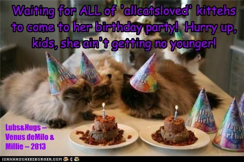 Waiting for ALL of 'allcatsloved' kittehs to come to her birthday party! Hurry up, kids, she ain't getting no younger! Lubs&Hugs -- Venus deMilo & Millie -- 2013