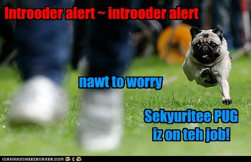 Sekyuritee PUG iz on teh job!