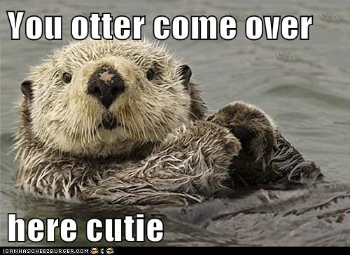 come over here flirting puns pick-up lines otters - 6935283200