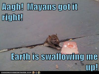 crack rats stuck swallowing mayans end of the world