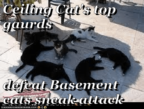 Ceiling Cat's top gaurds  defeat Basement cats sneak attack