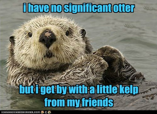 i have no significant otter but i get by with a little kelp from my friends