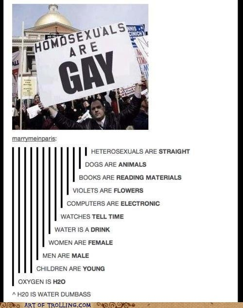 obvious,sign,homosexual,gay