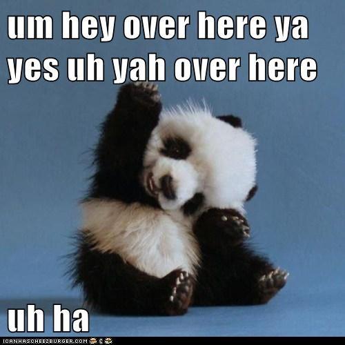 um hey over here ya yes uh yah over here  uh ha
