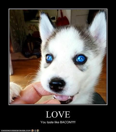 LOVE You taste like BACON!!!!!
