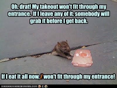 crack fit rats fat stuck food takeout - 6935996416