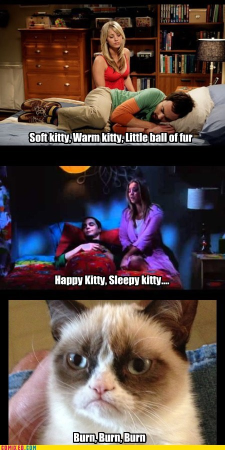 big bang theory TV Grumpy Cat burn