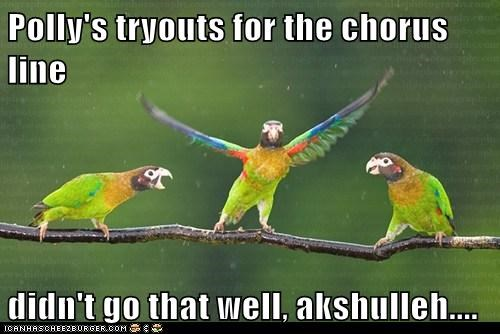 bad,dancing,tryouts,polly,parrots,chorus line