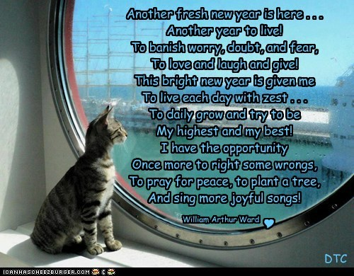 Cheezburger Image 6937221376