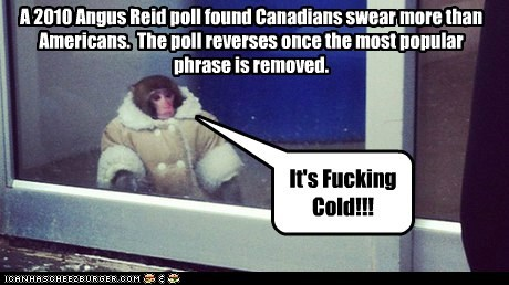 A 2010 Angus Reid poll found Canadians swear more than Americans. The poll reverses once the most popular phrase is removed. It's Fucking Cold!!!
