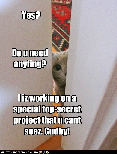 Yes? Do u need anyfing? I iz working on a special top-secret project that u cant seez. Gudby!