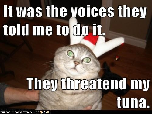 It was the voices they told me to do it.  They threatend my tuna.