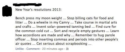 new years resolutions,resolutions,failbook,g rated