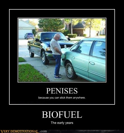 BIOFUEL The early years
