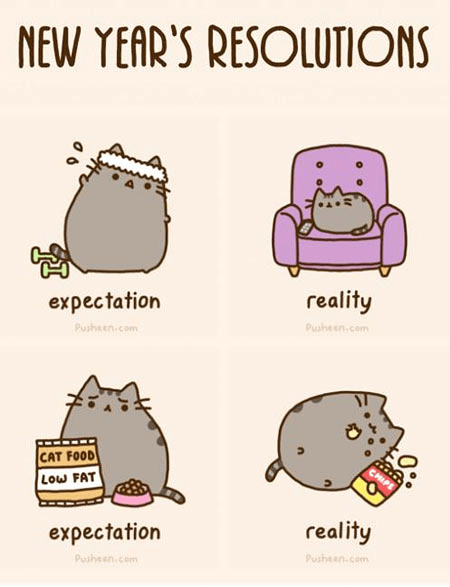 pusheen,new years resolutions,new years,expectations vs reality,Cats