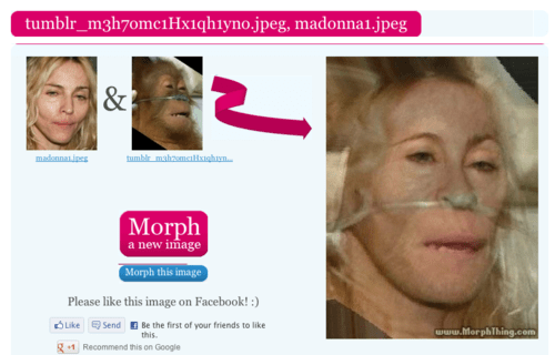 Madonna,face morph,funny