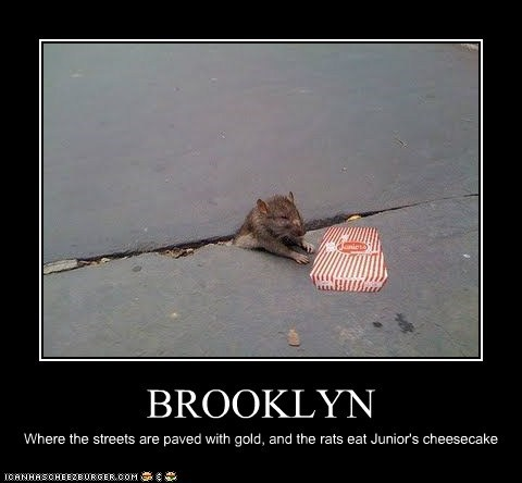 BROOKLYN Where the streets are paved with gold, and the rats eat Junior's cheesecake