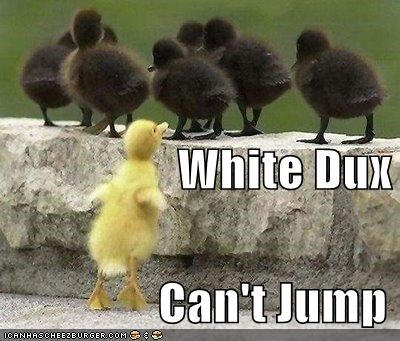 90s movie duck jumping lolducks segregation - 693819648