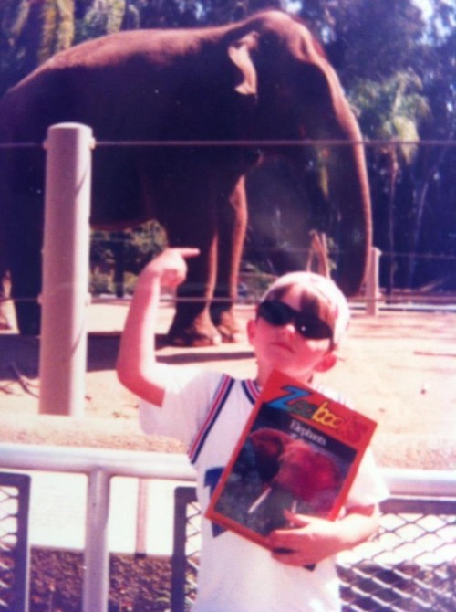 swag,elephant,zoobooks,zoo,90s,animals