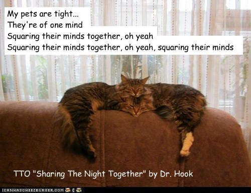 """""""Mind Meld"""" (TTO """"Sharing The Night Together"""" by Dr. Hook)"""