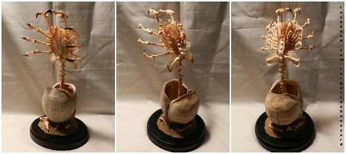 facehugger,Aliens,bones,sculpture,creepy