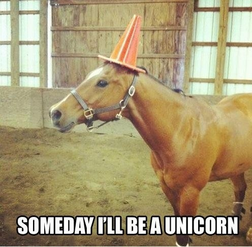 unicorn traffic cone horse