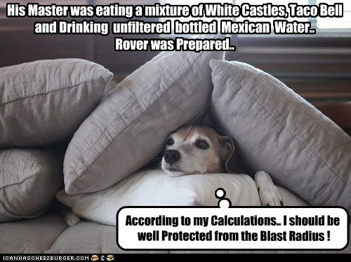His Master was eating a mixture of White Castles, Taco Bell and Drinking unfiltered bottled Mexican Water.. Rover was Prepared.. According to my Calculations.. I should be well Protected from the Blast Radius !