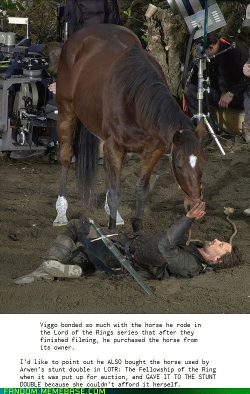 Lord of the Rings horses viggo mortensen - 6939258880