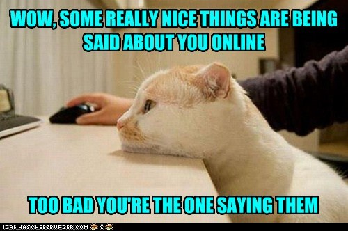 Sad forever alone compliment internet captions nice Cats - 6939374336