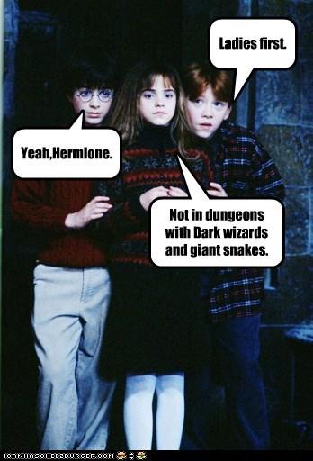 Harry Potter Daniel Radcliffe hermione granger wizards rupert grint Ron Weasley snakes emma watson - 6940163072