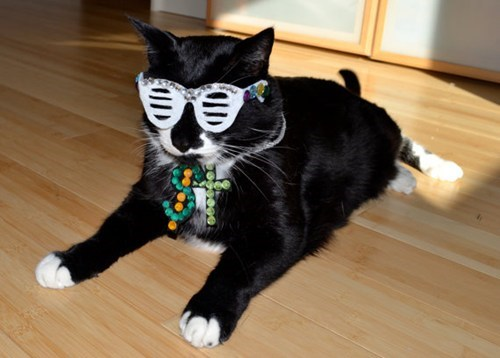 kanye west Bling Cats - 6940272896