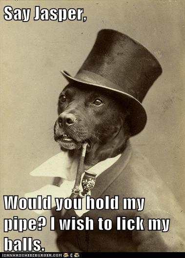 balls pipe old money dog - 6940337408