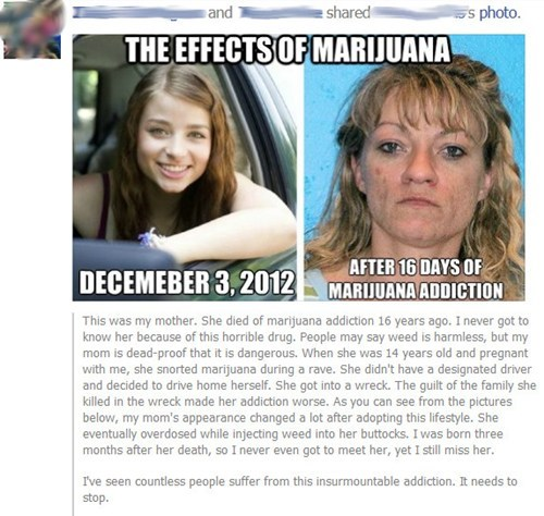 Not Even Once marijuana weed failbook - 6940377856
