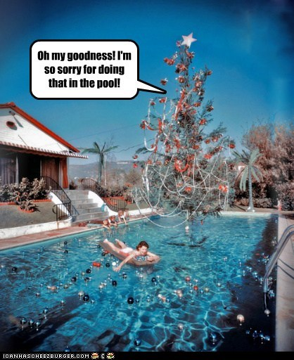 christmas,christmas tree,ornaments,pool,tree,warm