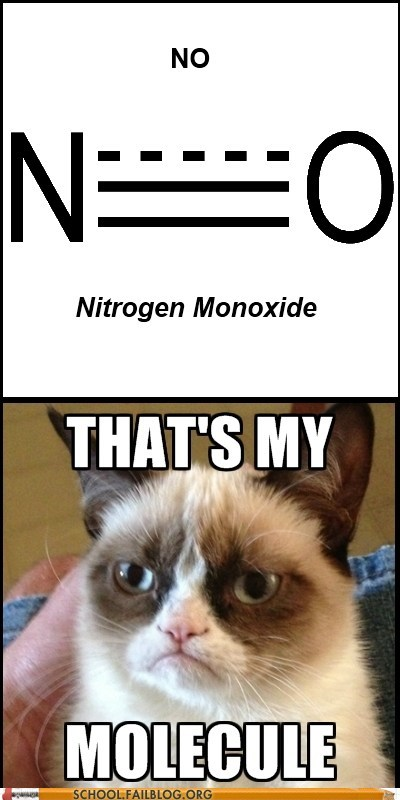 nitrogen monoxide,science,Chemistry,no