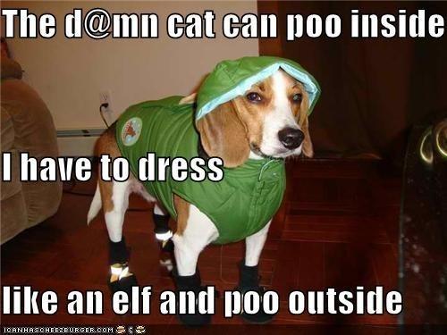 hoodie poo dogs - 6940897792