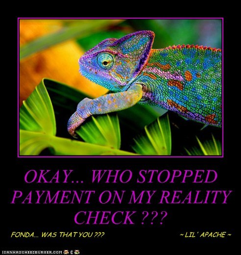 OKAY... WHO STOPPED PAYMENT ON MY REALITY CHECK ??? FONDA... WAS THAT YOU ??? ~ LIL' APACHE ~