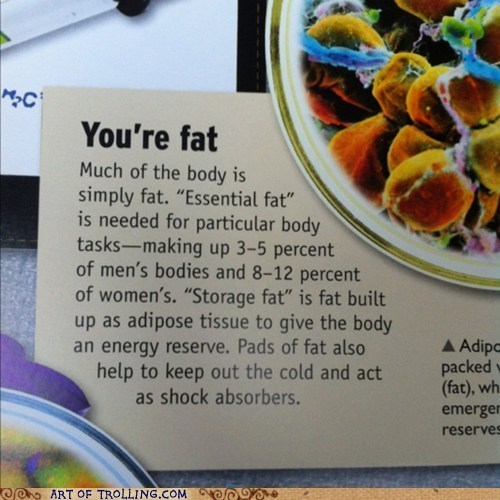 fat,textbook,insult